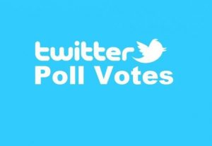 give you 100 twitter poll votes on your online contest