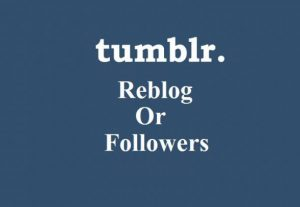 Get you 90 High Quality USA Based Tumblr reblog or followers