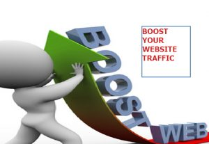 do Real Web traffic visitors from USA, United States