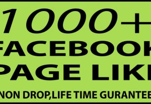 GET 1000+ FACEBOOK FAN PAGE LIKE NON DROP HIGH QUALITY for $6