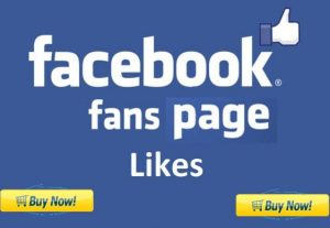 Give You 1000 Permanent Facebook Fan Page Likes
