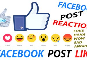 GET 12000+ FACEBOOK LIKE OR 10000+ REACTION FOR ONLY 5$