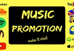 I will do music promotion for spotify, soundcloud, and youtube
