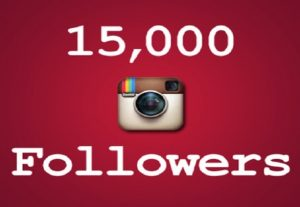 I will provide you real permanent 15k active instagram followers