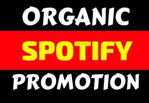 get organic 1000+ spotify stream or permanent followers music promotion