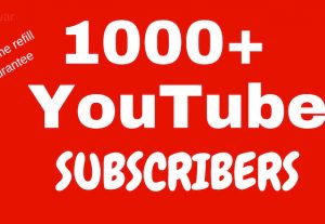 I will provide 1000  Non Drop YouTube subscribers to your channel on YouTube