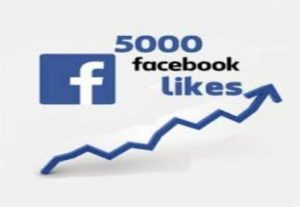 BEST OFFER!!! Get 1500+ facebook page likes High quality.