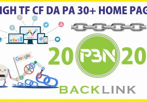 Give you 20 PBN Homepage High Quality permanent Backlinks