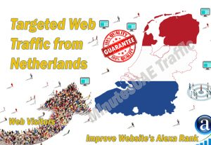Dutch web visitors real targeted Organic web traffic from Netherlands