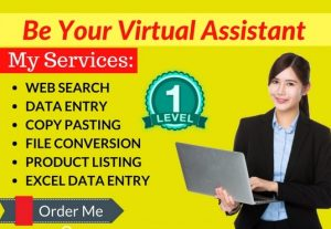 I Will Do Best Data Entry as a virtual assistant
