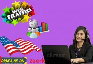 I will provide targeted organic traffic from USA