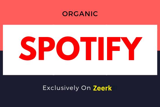 I will do organic spotify promotion, spotify music promotion