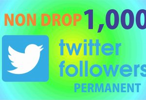 Get 1K Twitter non drop Followers