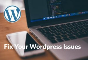 offer WordPress help to fix any website issues