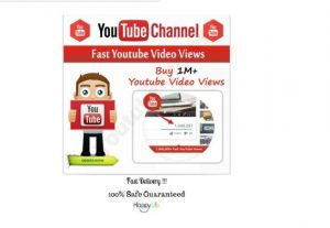 I will Provide you 2,000 High Quality non drop LifeTime Guaranteed YouTube Video Views