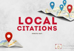 25 live ANY Country local Citations