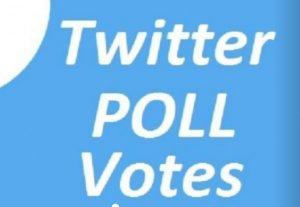 Give you 500 Twitter Poll Votes