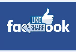 I will give you 500 Facebook post Shares