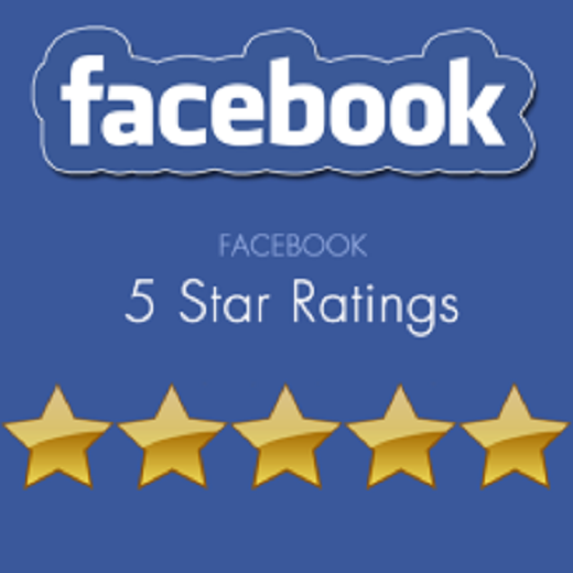 give you 30 Facebook five star rating and review on your fan page and business page