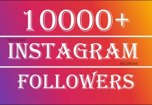 add 1000+ Instagram followers real and permanent at 10
