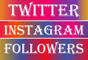 Get Instagram Followers or Twitter Followers, Non Drop and Real Active User Guaranteed (Refill if Drop)
