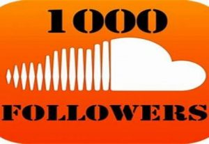 Exclusive: Get 1000+ Soundcloud Followers with High Retention.