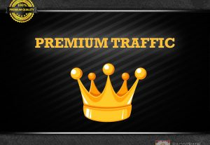We give you 1000 daily PREMIUM targeted visitors to your site