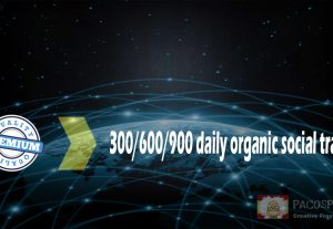 300 targeted organic social WEB TRAFFIC for your site for 30 days