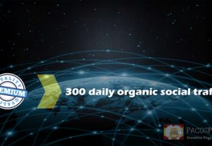 Traffic to your website – 30 days!