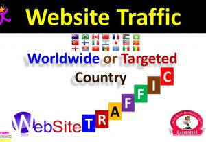 5000+ Valuable Traffic (Visitors) From USA for Your Blogs or Websites or 10,000 Visitors From Worldwide Country