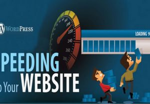 speed up your WordPress site (full package)