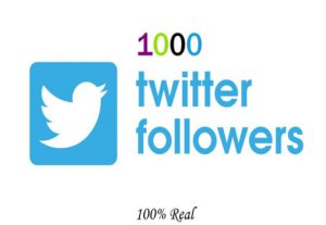 I will Give you 1000+ USA Twitter Followers.