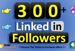 Promote 300+ LinkedIn Followers from Business Company Page or HQ Profile USA Quality, Real Active Users Guaranteed