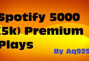 Give you 5K premium spotify streams just in 11$ (special offer)