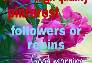 1000+ pinterest followers or repins real human with world wide followers