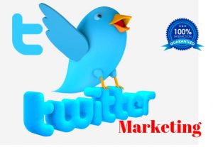 I Will Professionally Do Twitter Marketing And 1500 real follower