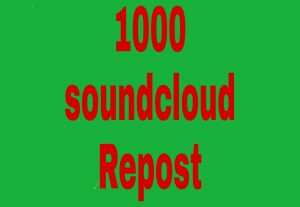 1000 soundcloud Repost fast delivery