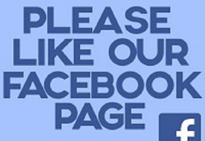 I will Give You 100 Facebook Pages Like 100% Non Drop Guarantee