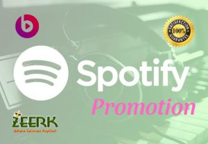 I Will Do Viral Spotify Promotion And Integrated Spotify Music Promotion