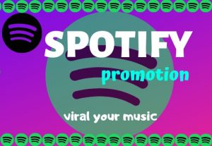 I Will Do Spotify Promotion Playlist With Great Skill