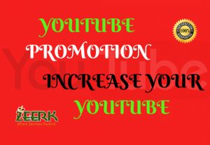 I will do promote your Youtube video views