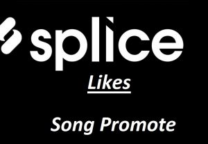 Give you 50 Real USA Splice Likes Promotion Your Remix