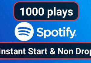 SUPER FAST-1000 High Quality Spotify Plays For Your Music Promotion