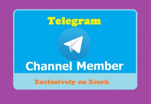Add 100 Real High Quality Telegram Channel Members