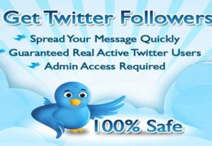 Get Fastest 500+ Real & Active Looking Twitter Followers