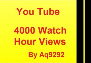 I will give 2000 you tube watch time views