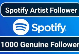 SUPER FAST- 1000 Spotify HQ USA Artist Followers Or 1000 Playlist Followers