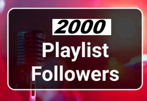 2000 Spotify HQ USA Artist Followers Or Playlist Followers