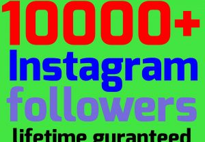 Add 2000+instagram followers OR 1500+Instagram likes OR 200k Instagram views(Guaranteed non drop)[Read description]