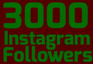 Get permanent 3000+Instagram followers[Read description]